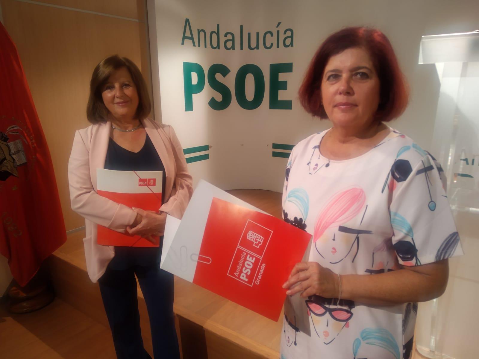 El PSOE registra dos iniciativas parlamentarias para garantizar los protocolos de actuación en las 77 residencias de la provincia