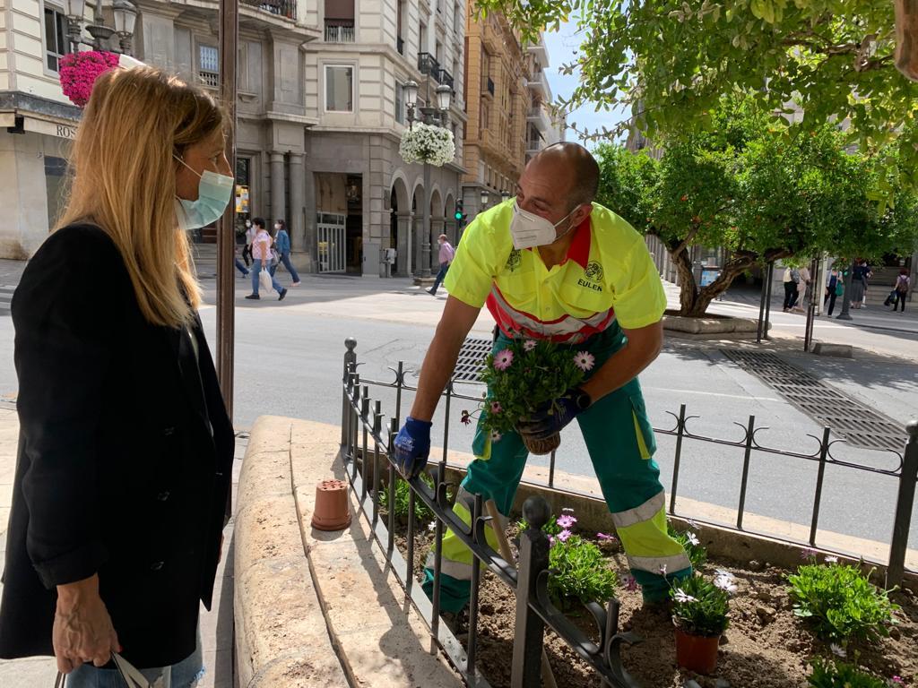 El Ayuntamiento renueva las plantaciones florares en varias zonas