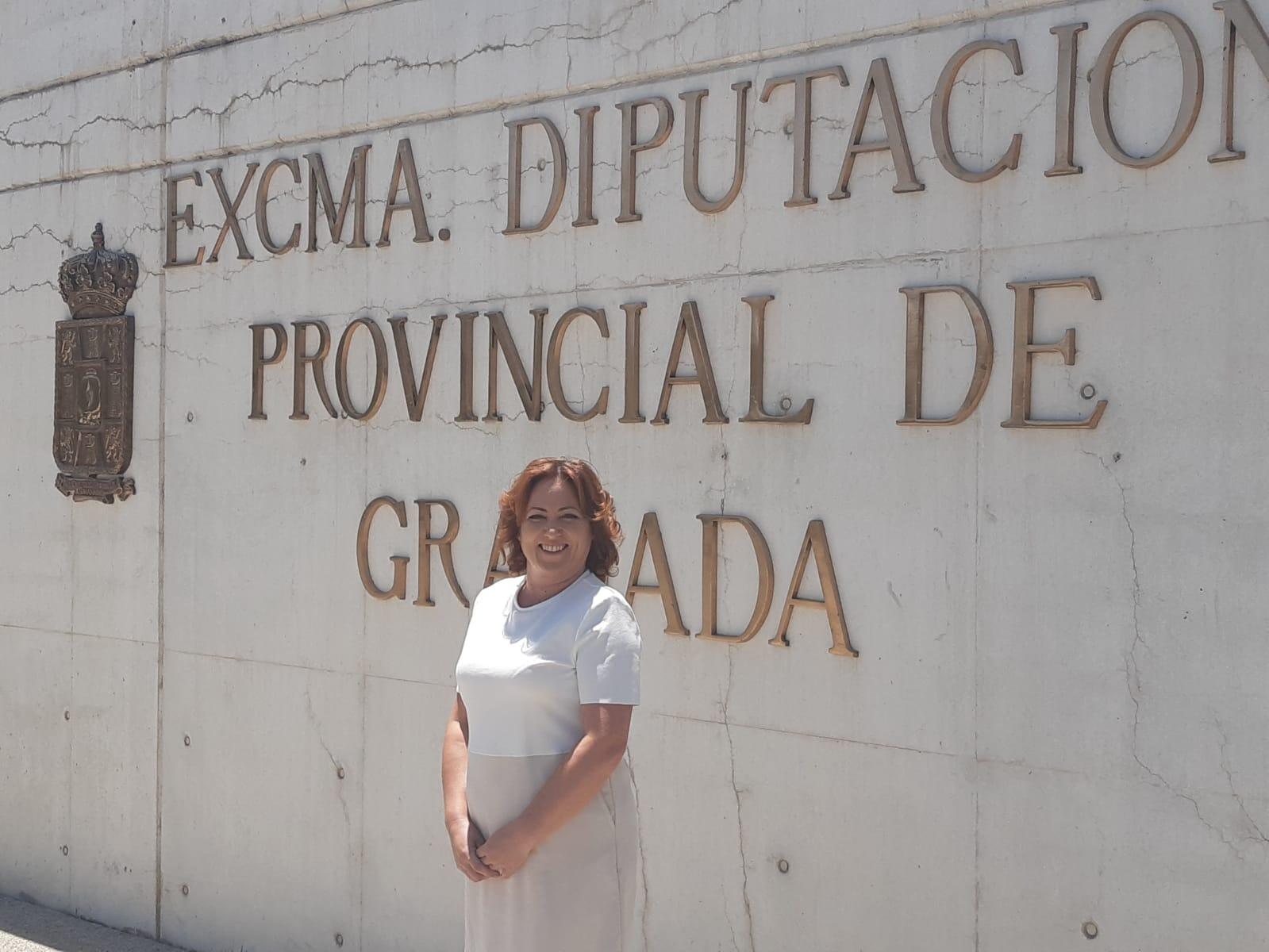 IU recibe el apoyo de Diputación para frenar la privatización de los Servicios Sociales