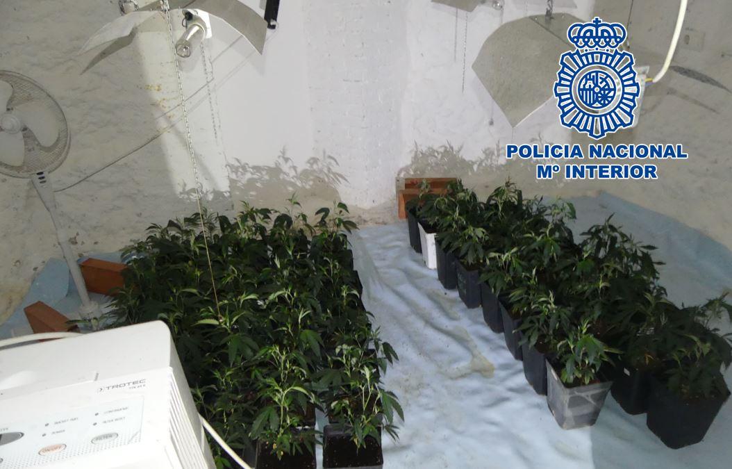 Descubren una plantación de marihuana en dos habitaciones-cueva tras el incendio de una vivienda