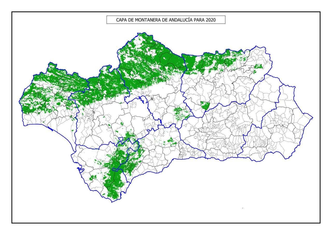 Publicada la capa de montanera y la superficie arbolada cubierta de Andalucía para 2020