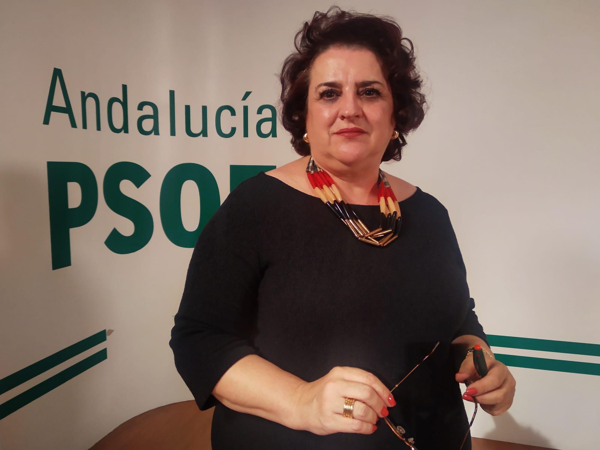 """El PSOE pide a la Junta que rectifique el """"inadmisible"""" Plan de inicio escolar y garantice la seguridad"""
