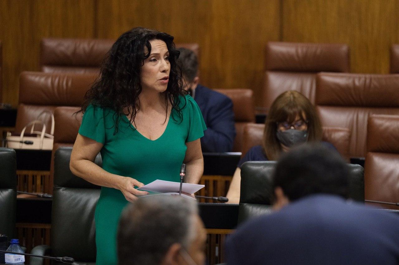 La Renta Mínima andaluza alcanza su máximo histórico con 17,3 millones de euros y 20.000 familias beneficiarias, según la Junta