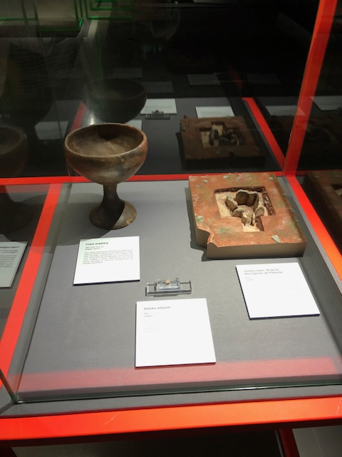 """El museo MUNCYT reabre con una exposición que incluye a la investigación """"Orígenes en el Altiplano granadino"""" de la UGR"""