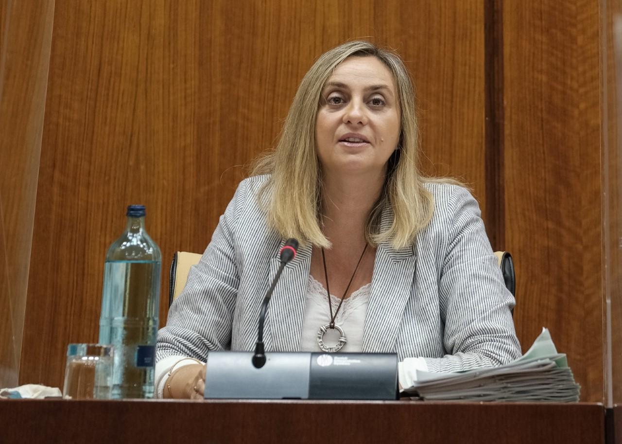 La Junta anuncia que actuará en los túneles del Serrallo para culminar la mejora de la Ronda Sur de Granada