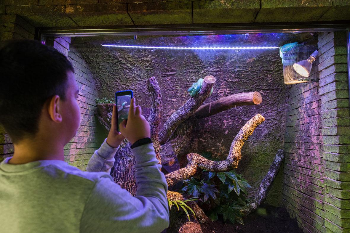 El BioDomo cumple su cuarto aniversario con más de 749.000 visitas
