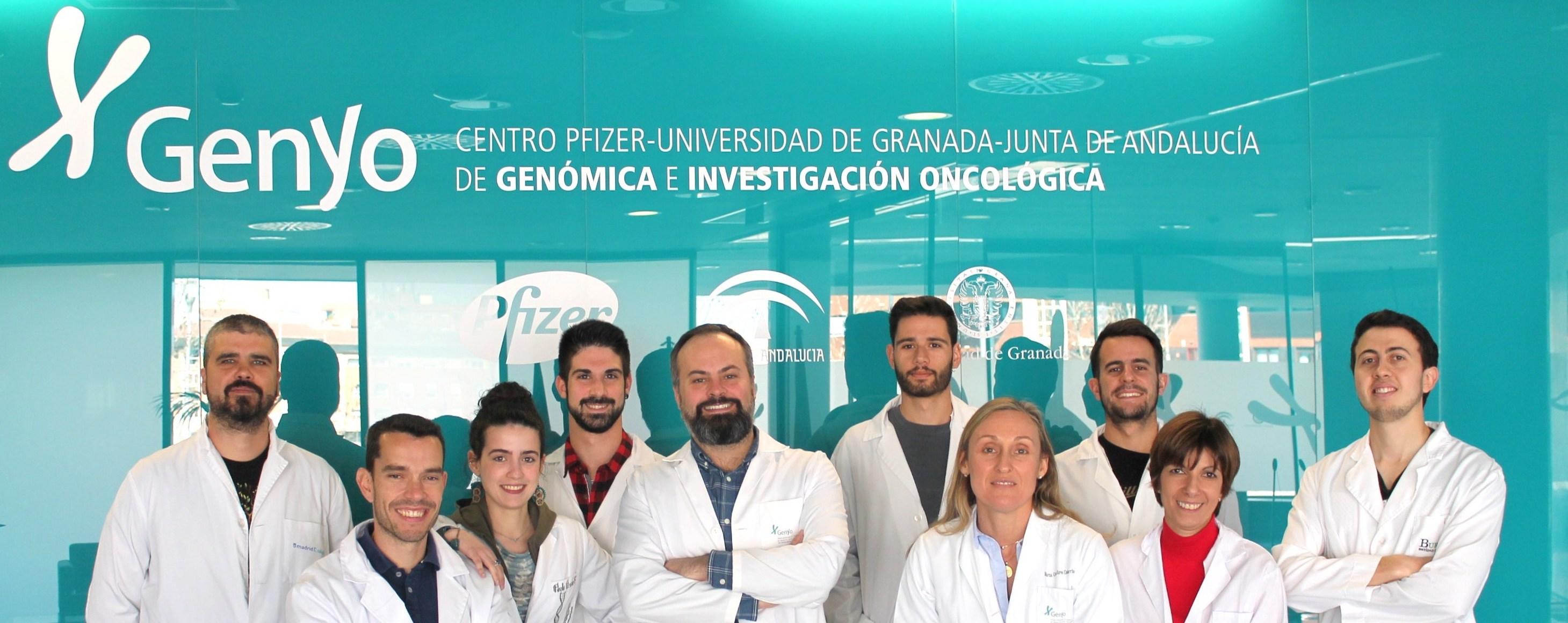 Científicos de la UGR descubren una nueva mutación que promueve el desarrollo tumoral