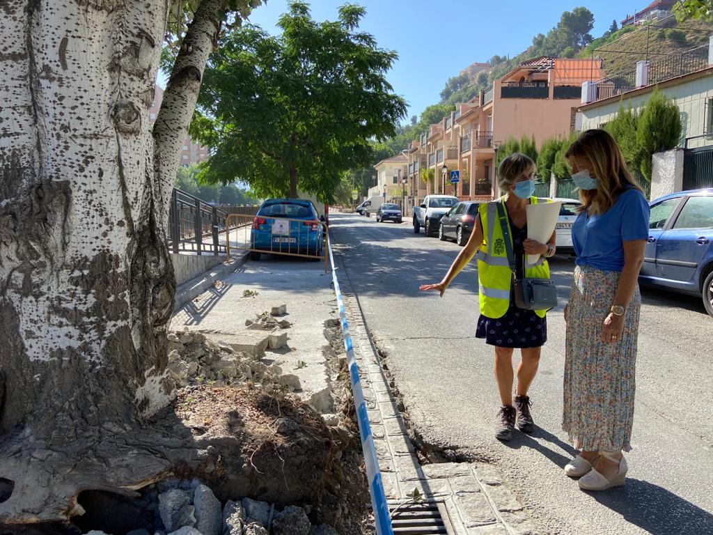 El Ayuntamiento ejecuta obras de mejora en el Paseo de la Fuente de la Bicha