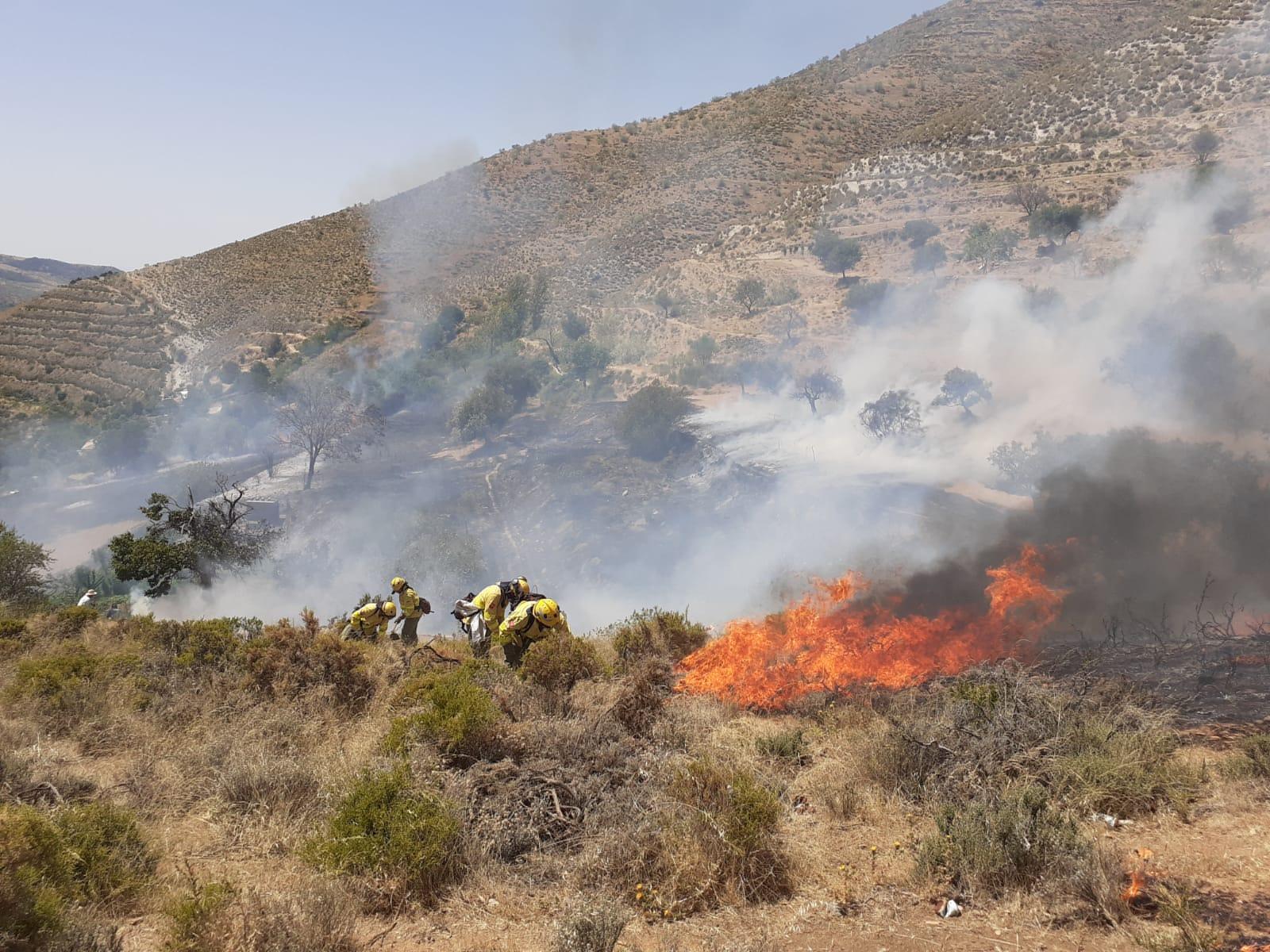 Investigan a un joven como autor de un incendio en Güéjar Sierra cuando quemaba pasto
