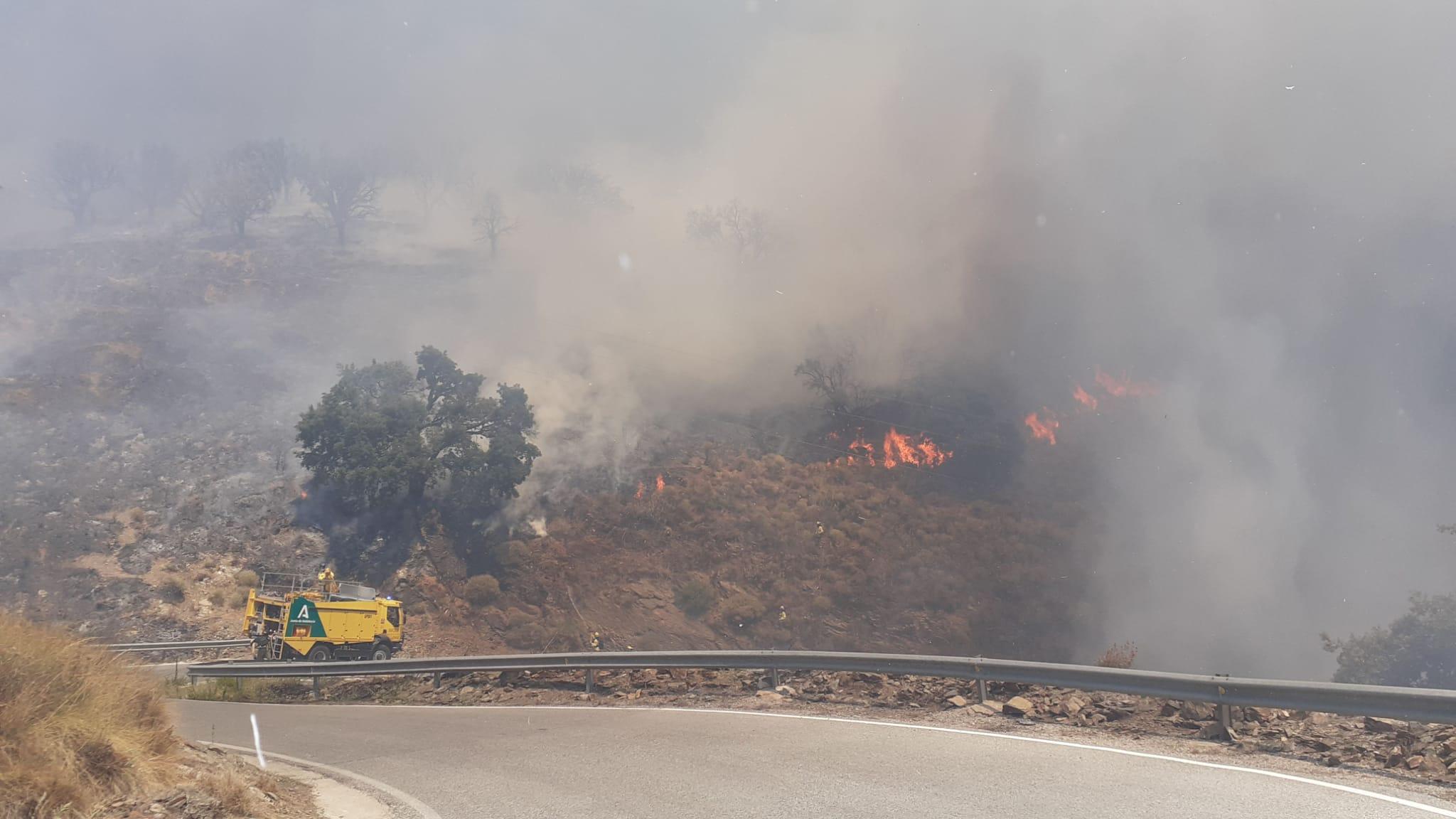 Estabilizado el incendio forestal declarado en Polopos