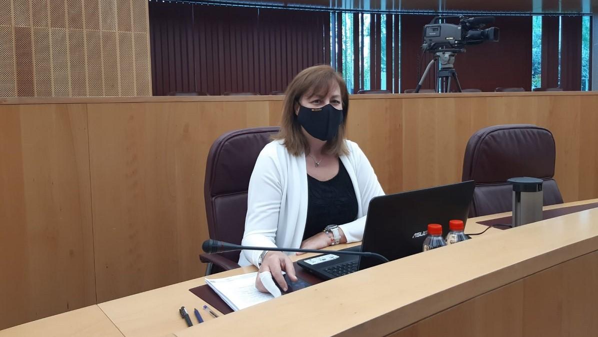 El pleno de Diputación aprueba la moción de VOX para impulsar medidas urgentes para la línea marítima Motril-Melilla
