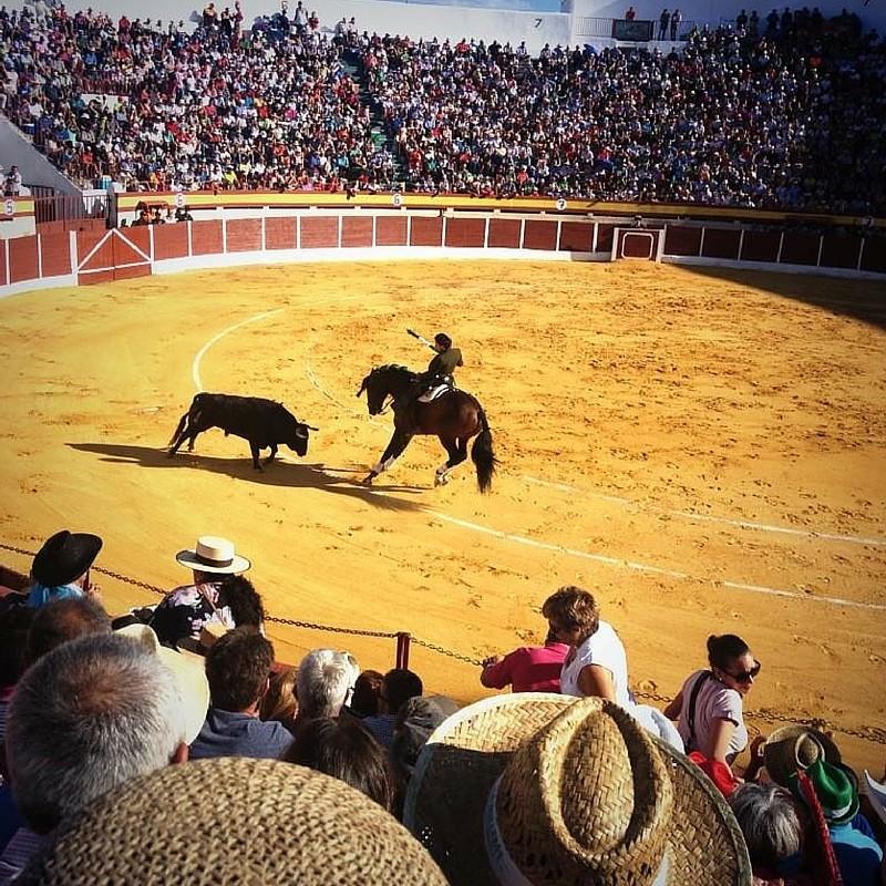 Ecologistas en acción apoya al Ayuntamiento de Baza en su petición de suspender la corrida de toros