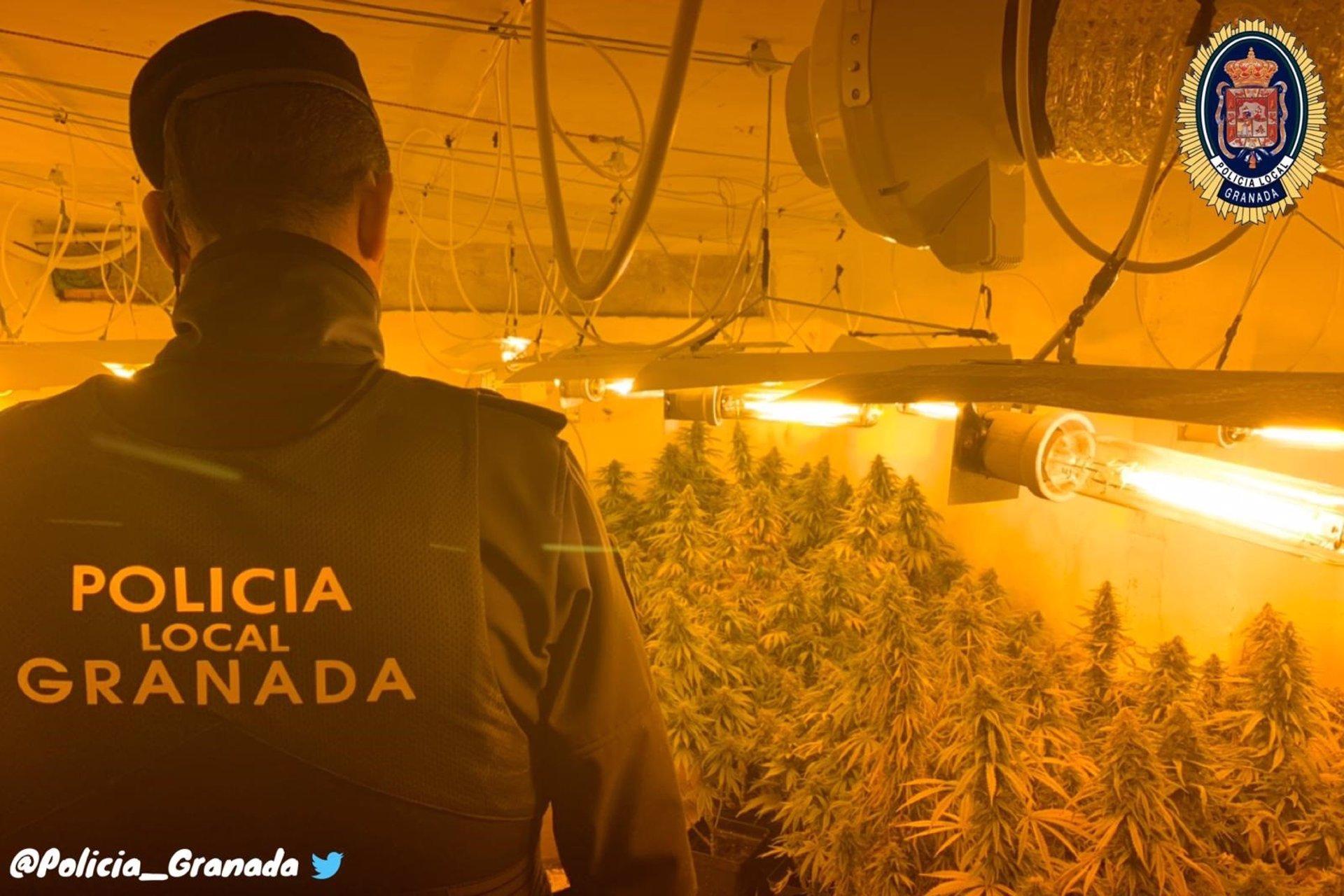 Detenido con diez kilos de marihuana en un piso de Pinos Puente
