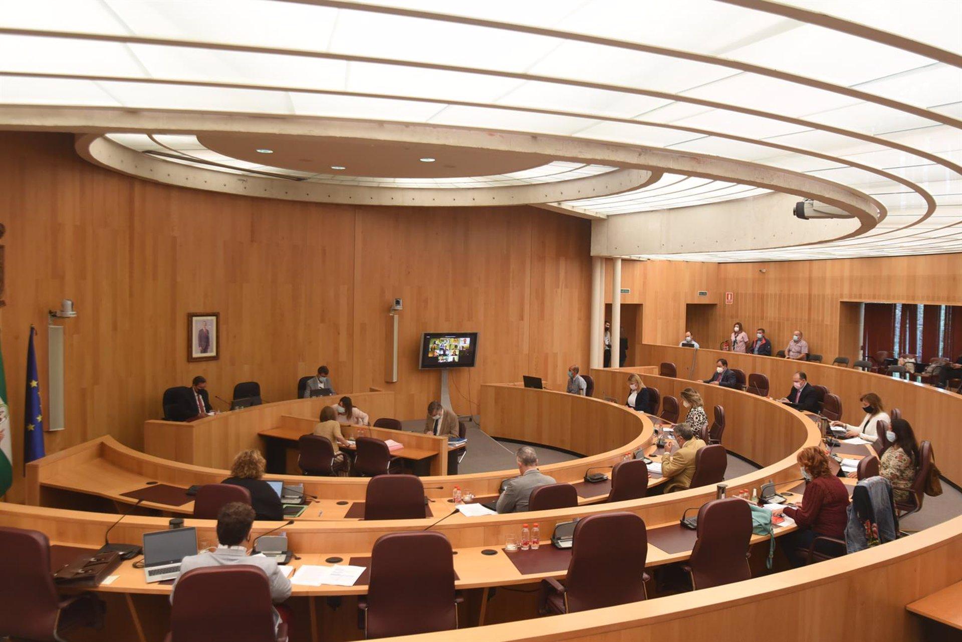 El PP critica la asistencia presencial de Entrena al Pleno de Diputación tras «contacto» con el alcalde