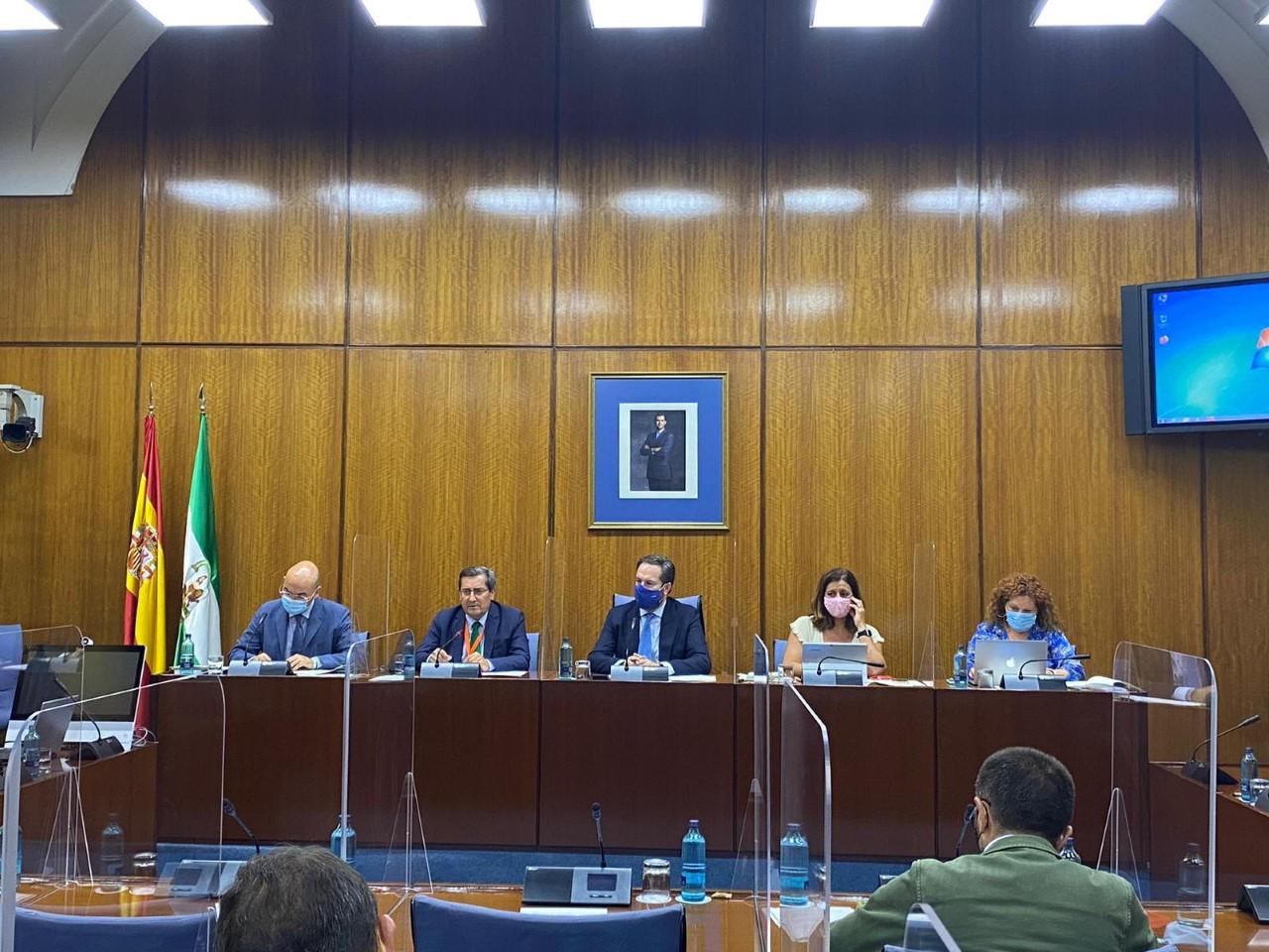 Entrena reivindica en el Parlamento andaluz el papel de las diputaciones contra la despoblación