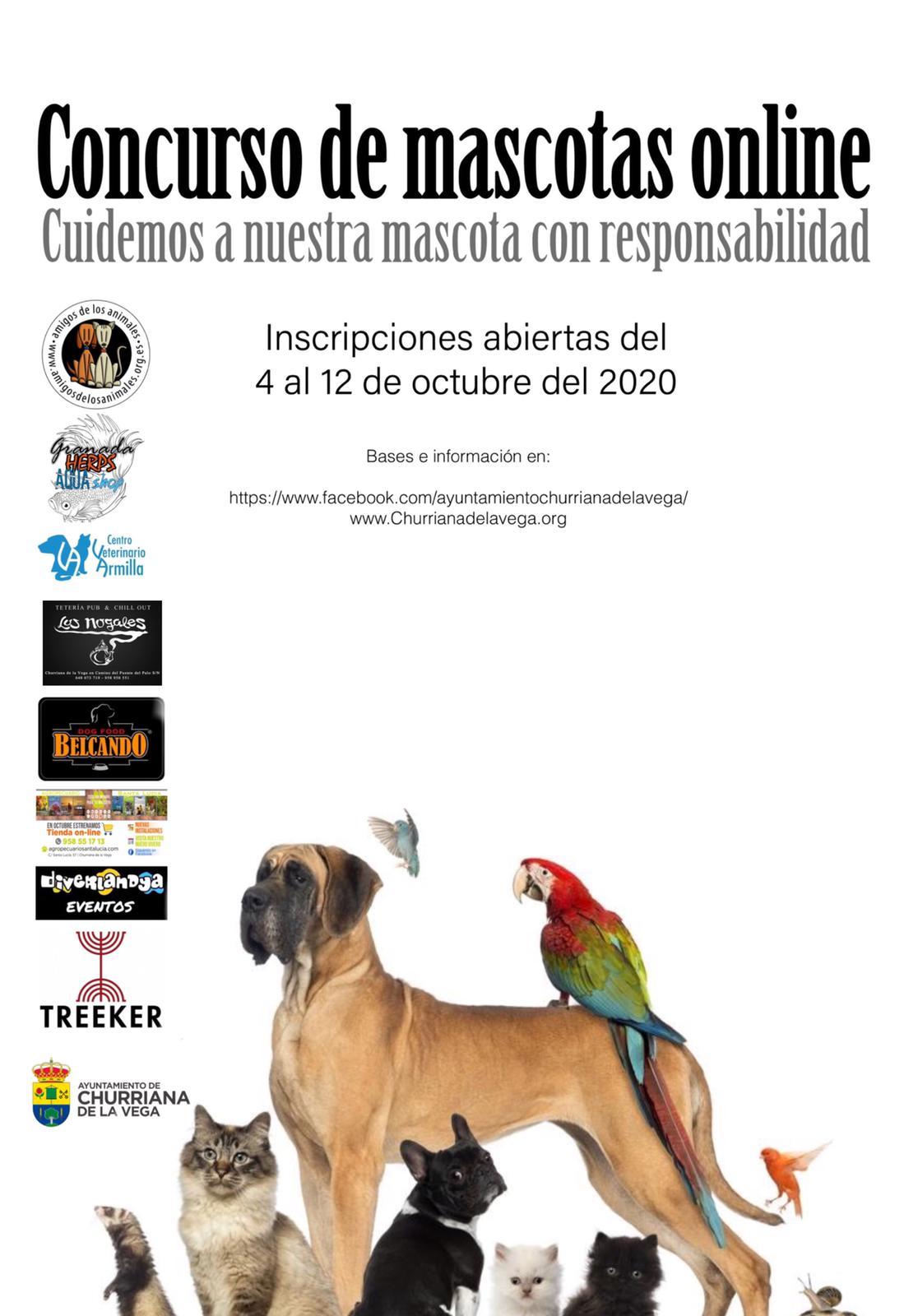 Concurso de mascotas en Churriana de la Vega