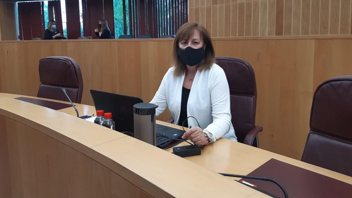 Vox censura el reparto de fondos Covid que hace Diputación en los municipios del cinturón metropolitano