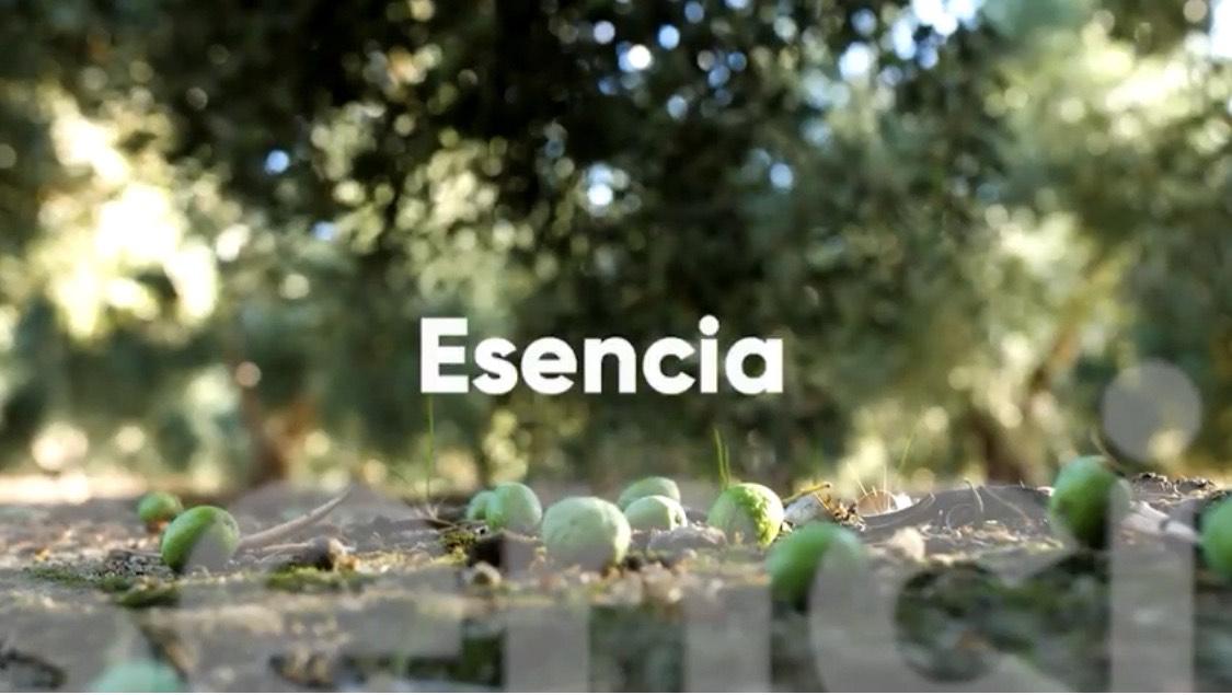 Diputación lanza una campaña para fomentar el consumo de aceite de oliva virgen extra de Granada