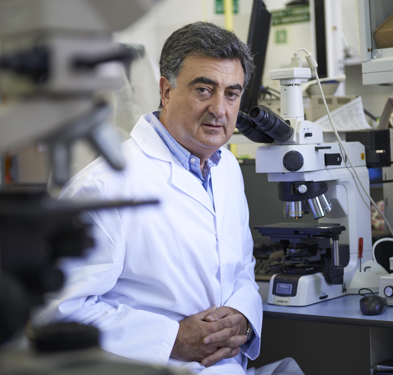 Miguel Á. González, catedrático de la UGR, entre los expertos que asesorarán a la OMS en el estudio del cáncer y pre-cáncer oral
