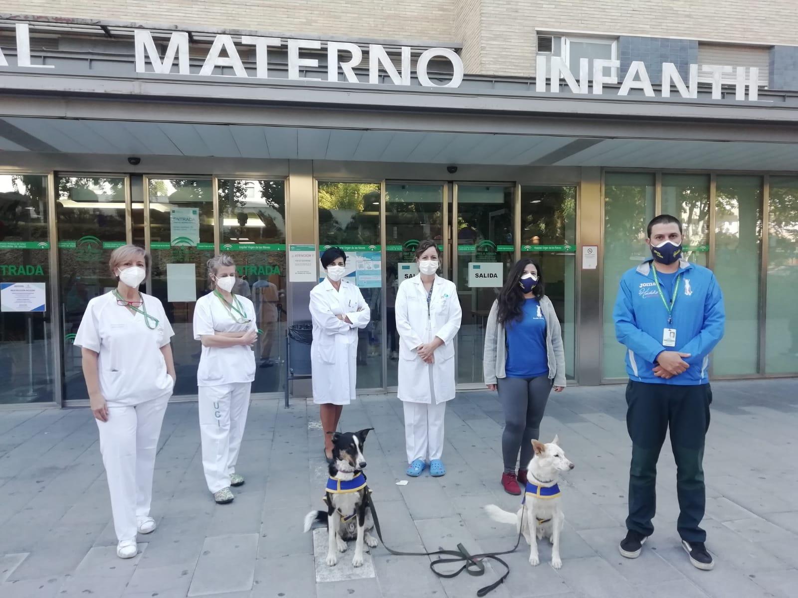 El Hospital Virgen de las Nieves retoma la terapia canina con un protocolo adaptado al Covid19