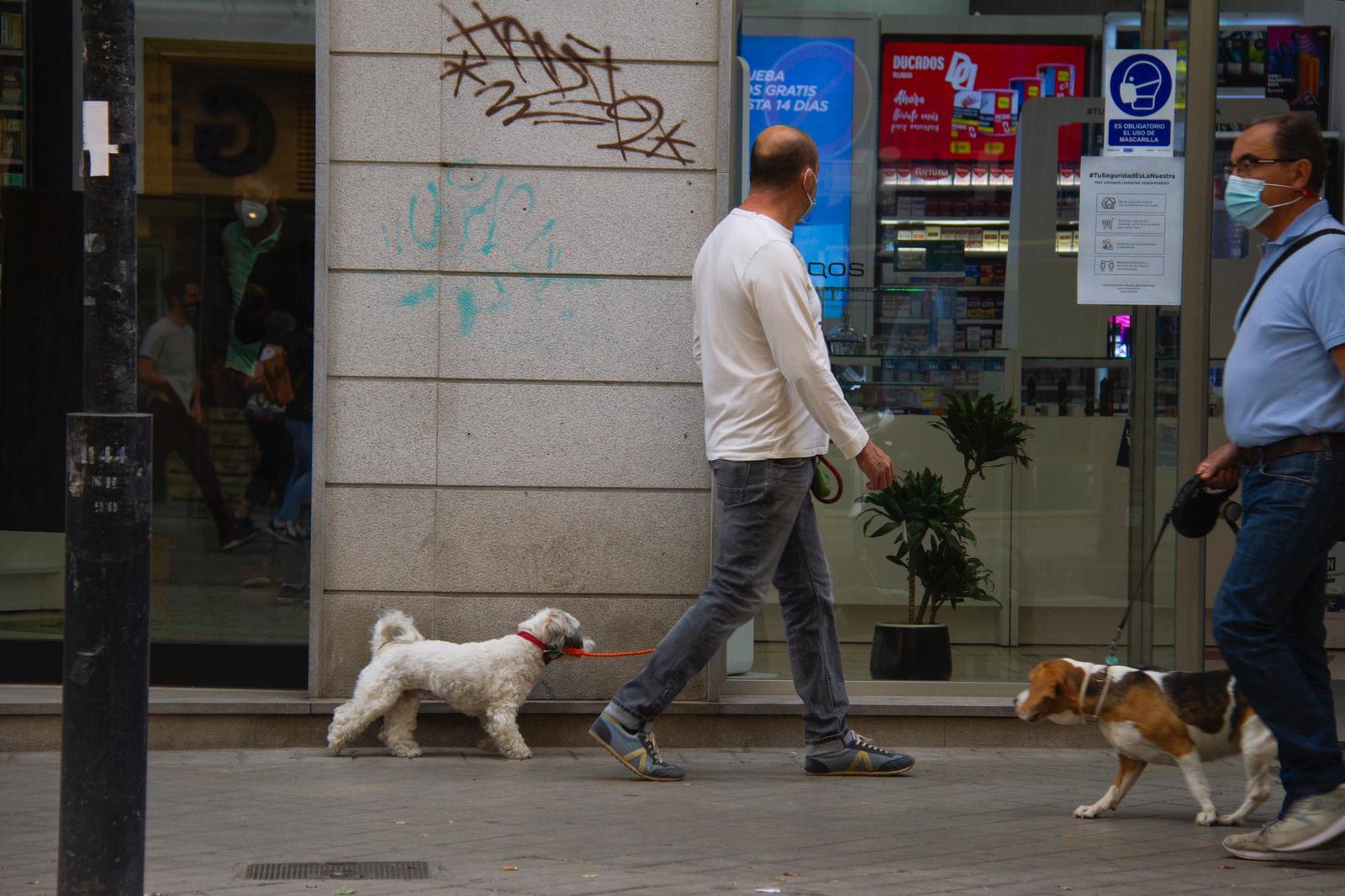 Piden ante los tribunales la devolución del perro cuya adopción fue revocada por un juez
