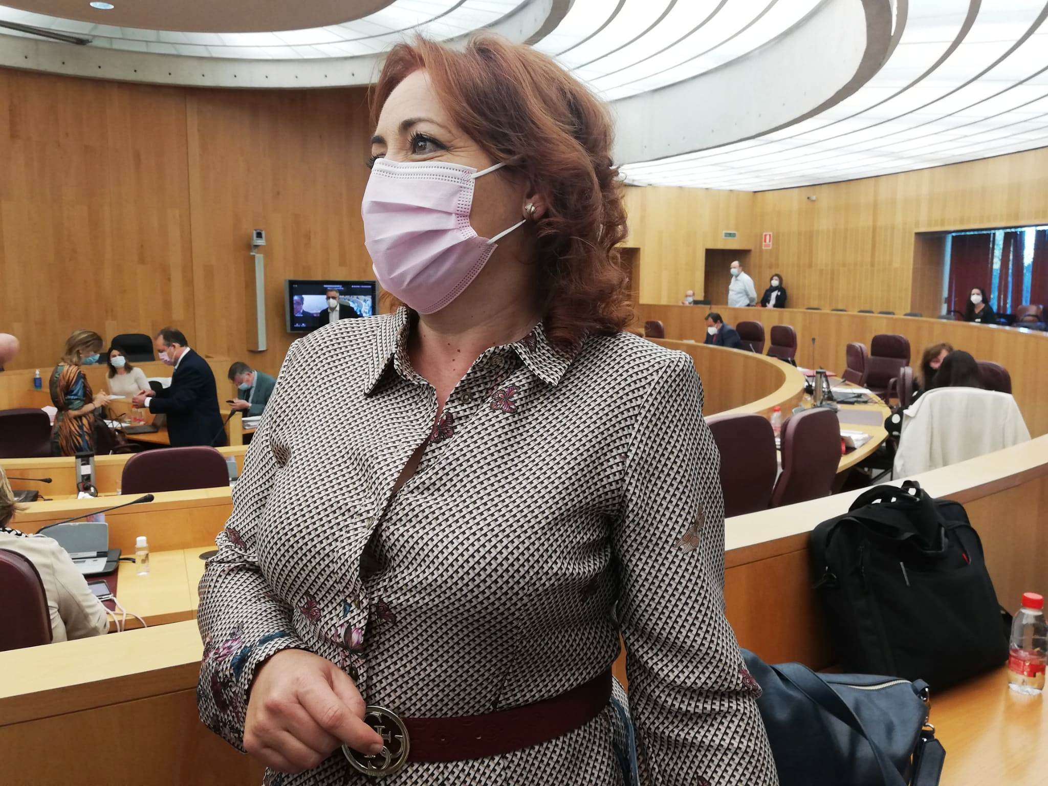 IU consigue el apoyo de Diputación para destinar más fondos a los municipios y garantizar los servicios sanitarios
