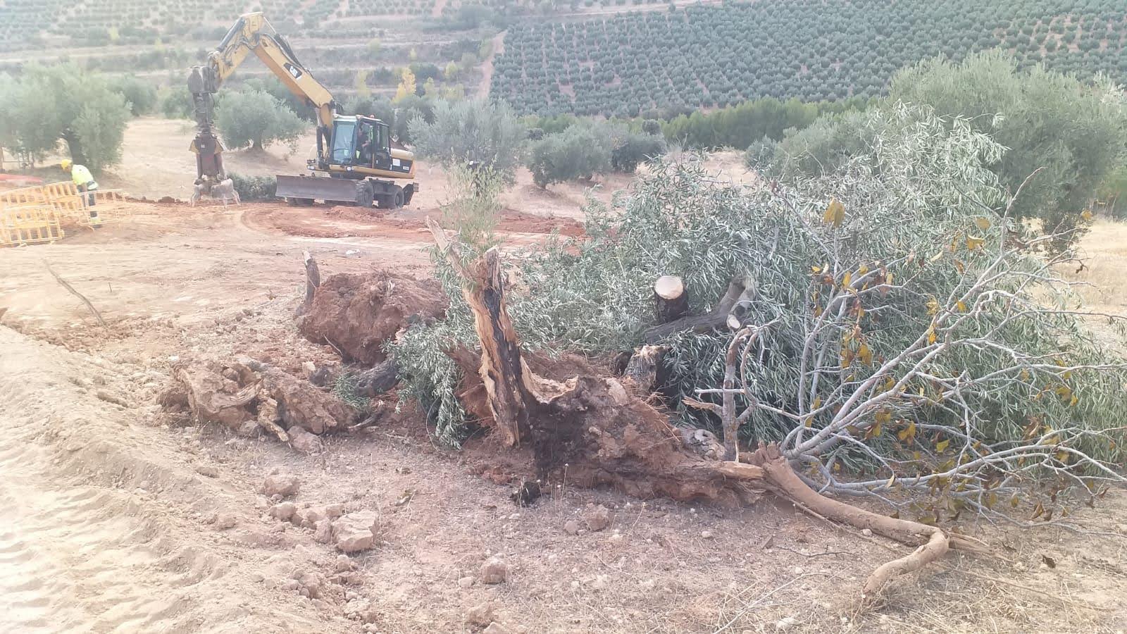 Red Eléctrica Española invade las propiedades privadas sin declaración de impacto ambiental en vigor