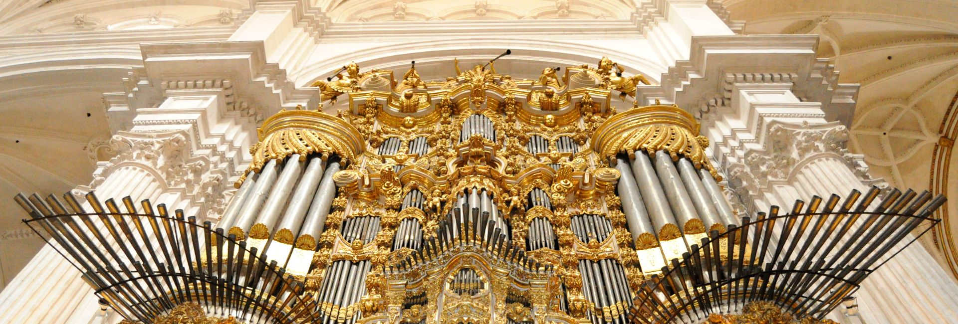 La Comisión Provincial de Patrimonio aprueba la restauración del órgano de la Epístola de la Catedral