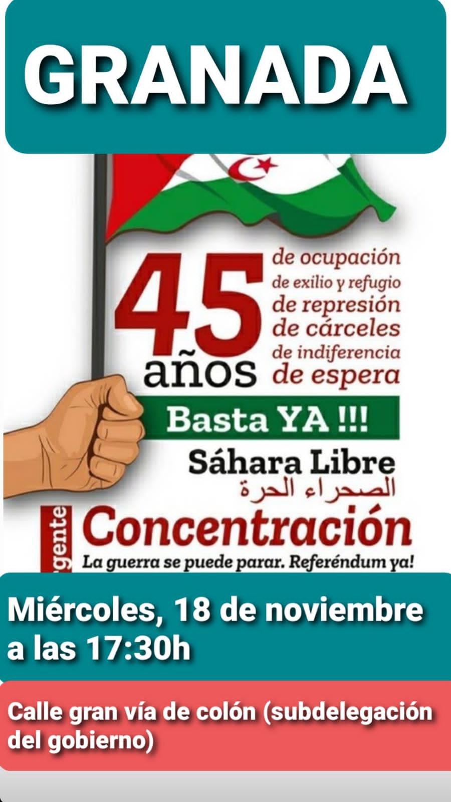 IU Granada organiza una concentración en apoyo al Pueblo Saharaui
