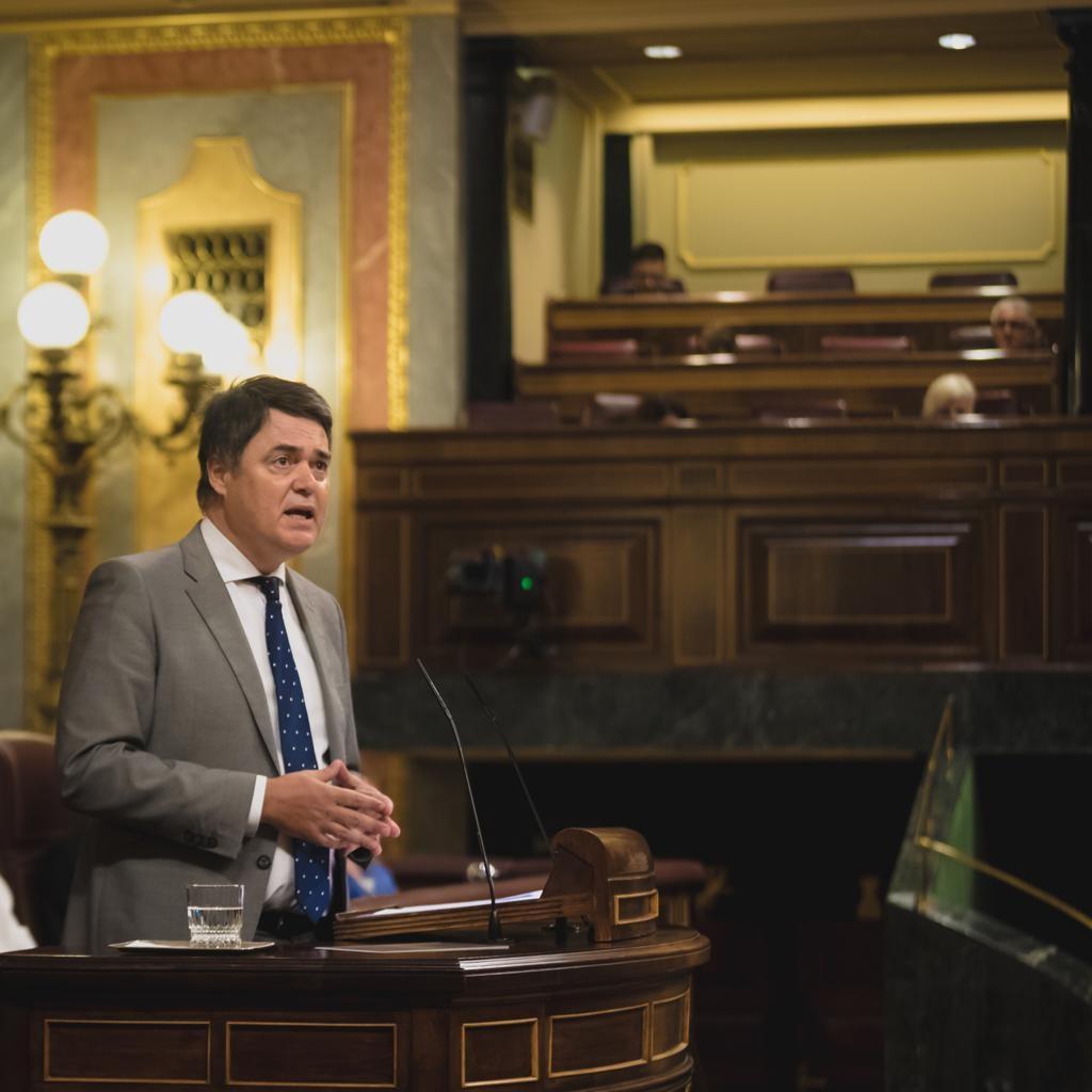 Rojas reprocha al Gobierno su rechazo a la iniciativa del PP para reforzar los medios de las Fuerzas y Cuerpos de Seguridad