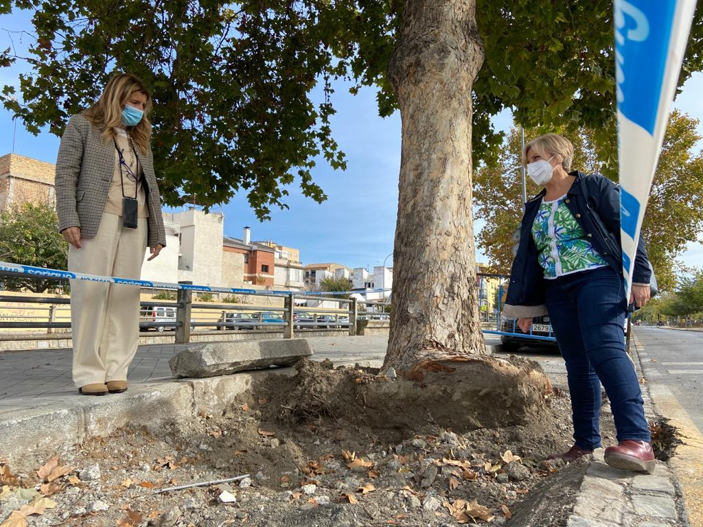 El Ayuntamiento trabaja en la mejora del Camino de Santa Juliana