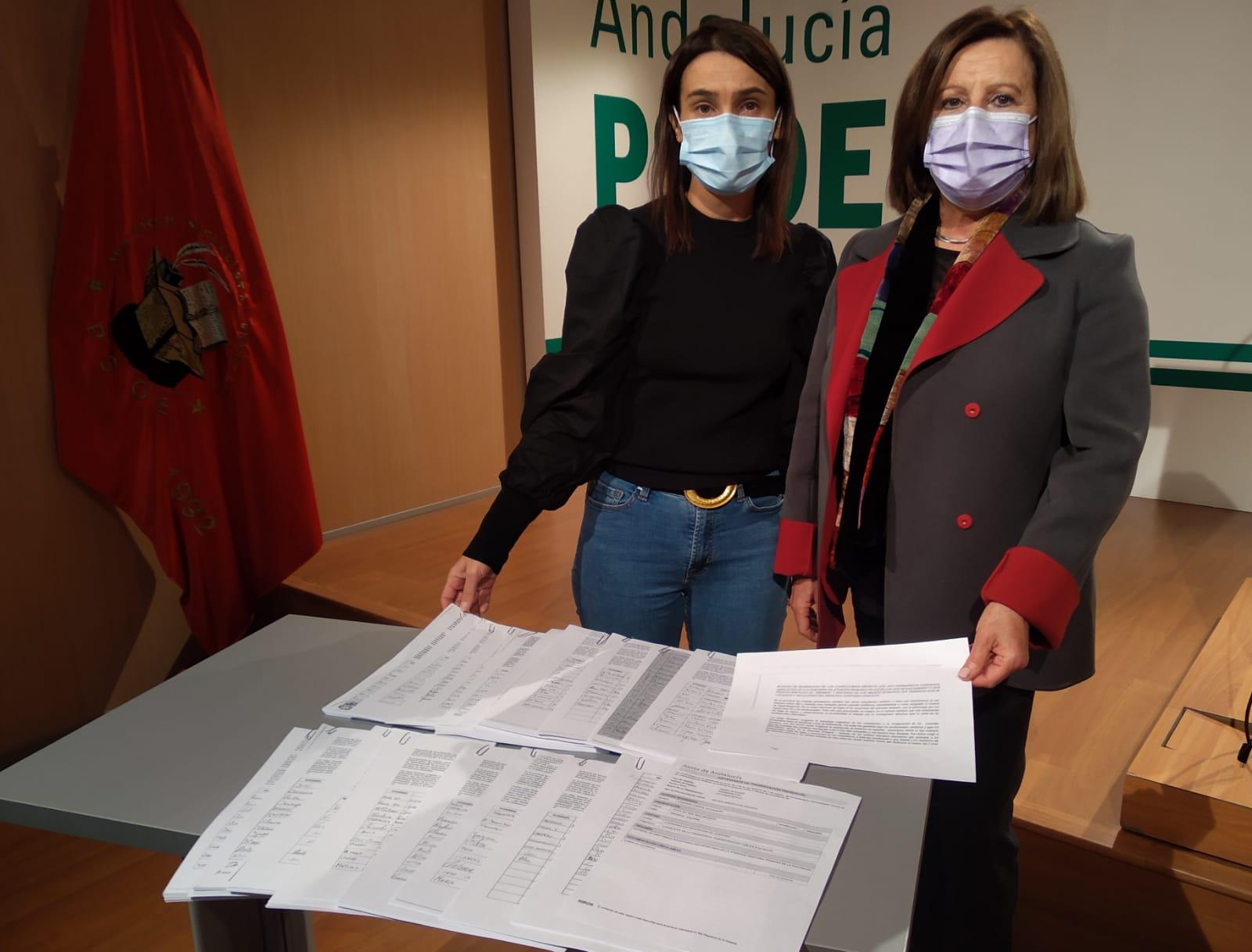 """El PSOE presenta 5.200 firmas en el registro de la Junta para exigir el refuerzo """"real"""" de la Atención Primaria"""