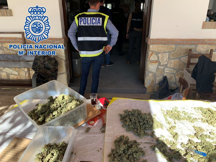 Detenidos 14 integrantes de una organización que vendía marihuana al por mayor a Italia