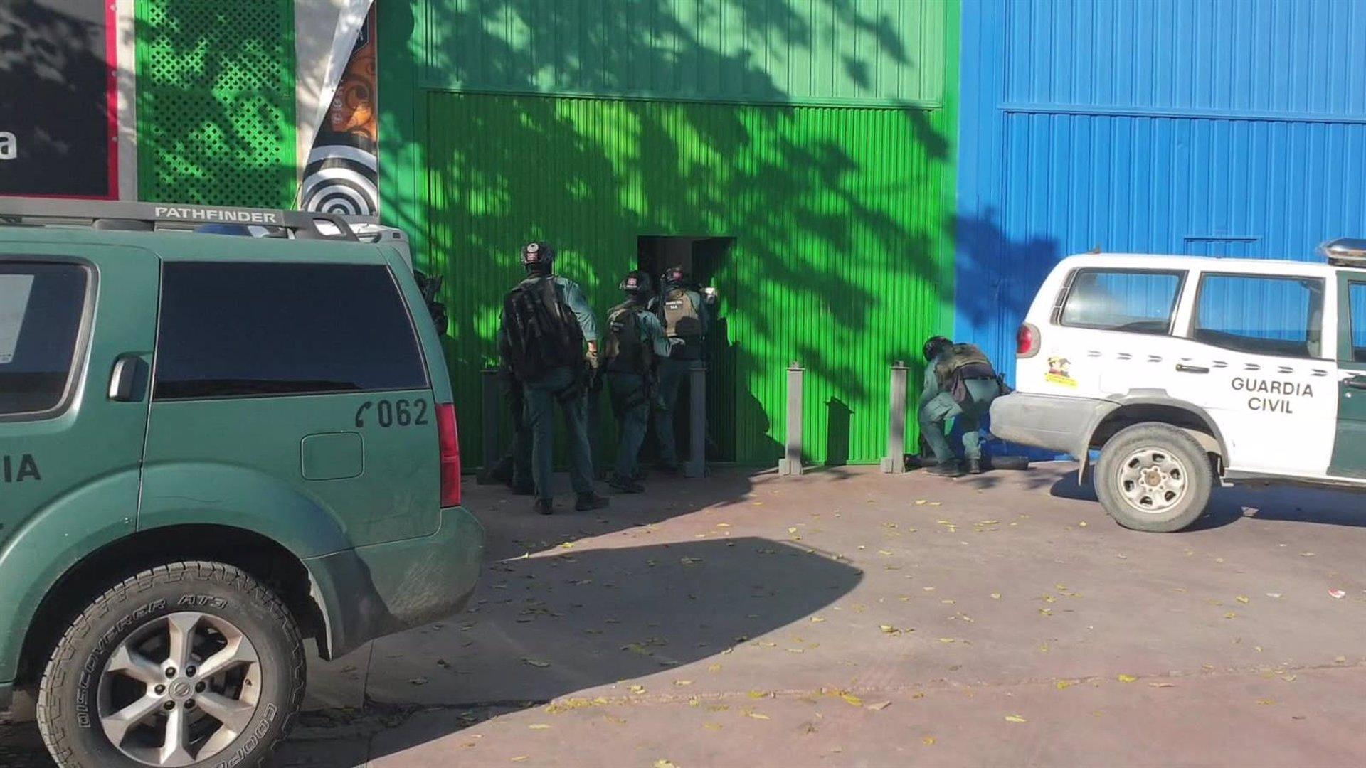 Una veintena de detenidos y 6.000 plantas intervenidas en una macrooperación por tráfico de marihuana