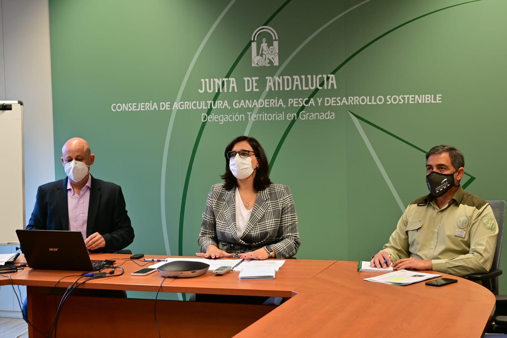 El Plan Infoca actúa 102 ocasiones en lo que va de año con 86 intervenciones en el medio forestal