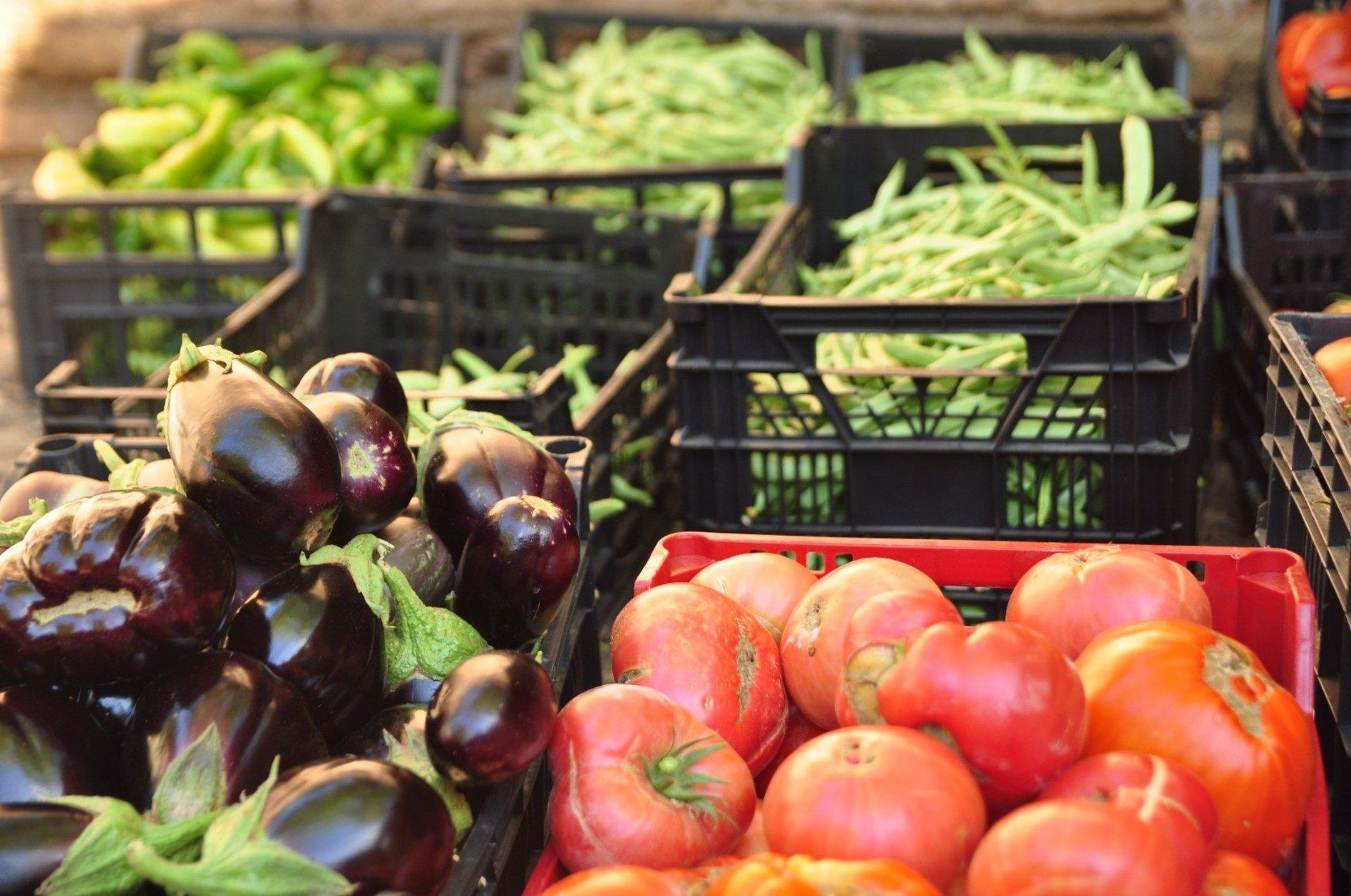 Las huertas del Generalife han producido este año más de 6.600 kilos de verduras y frutas
