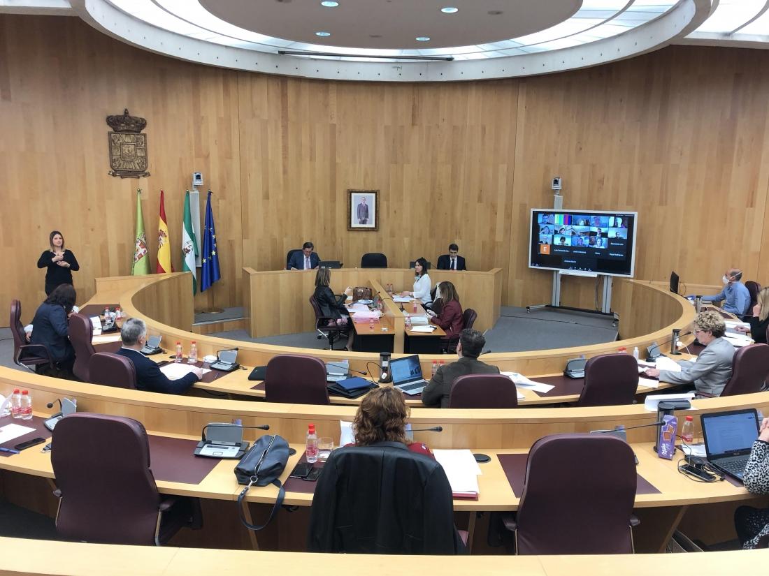 Diputación se reúne con contructores y colegios profesionales para plantear propuestas al Plan de Recuperación