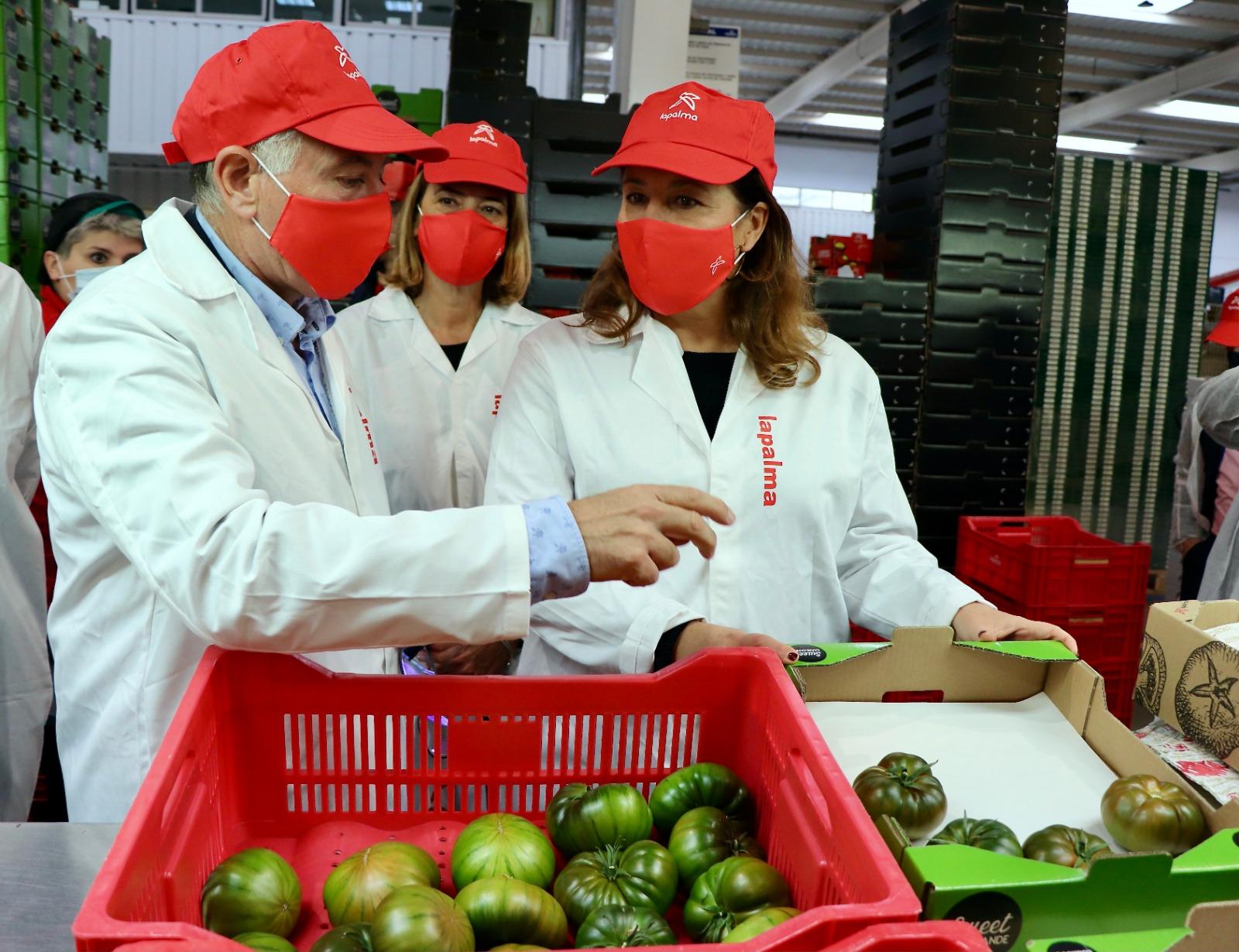 Agricultura ha subvencionado con casi 8 millones este año a las cooperativas agrarias granadinas