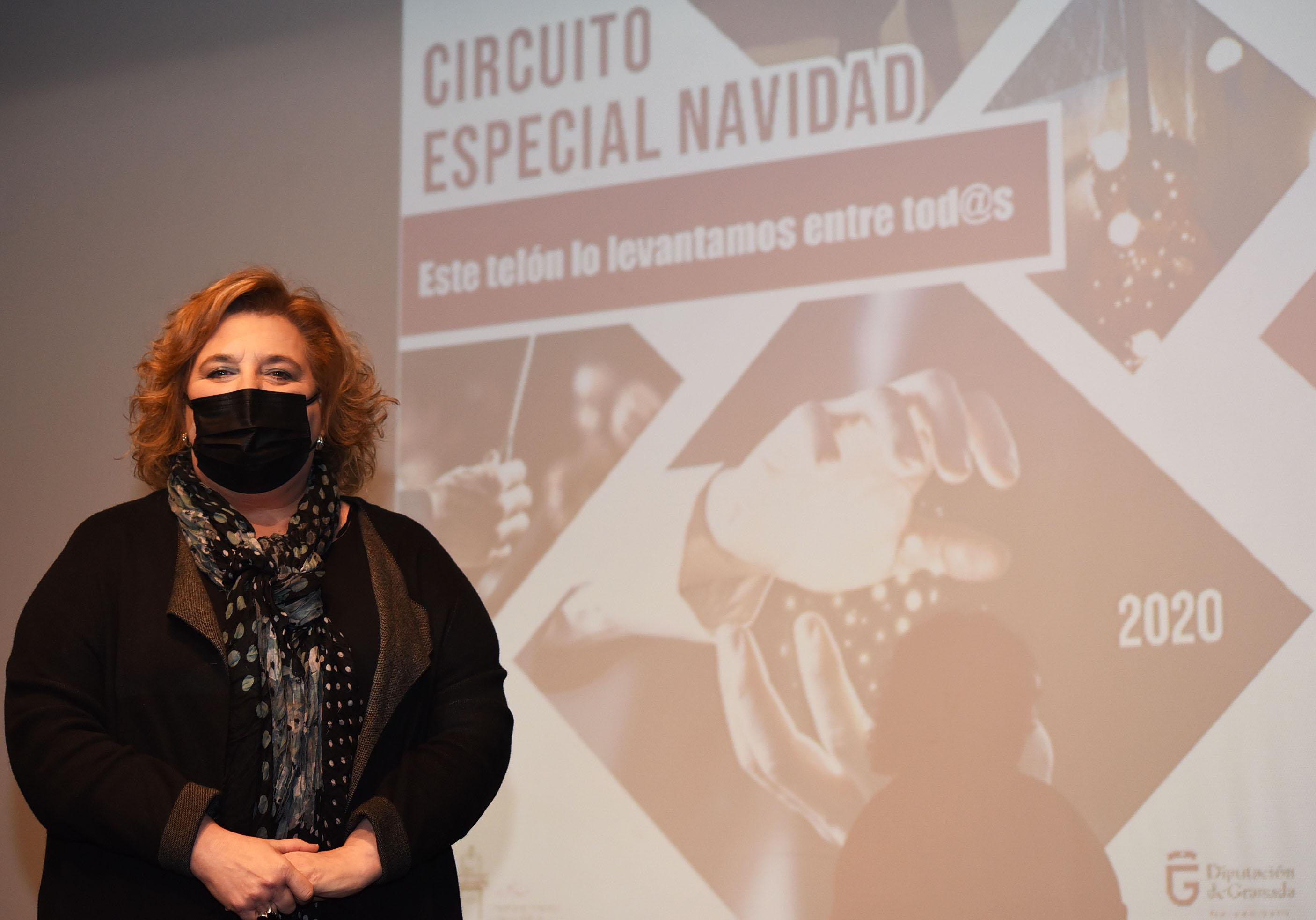 Diputación pone en marcha actividades culturalesnavideñas en la provincia