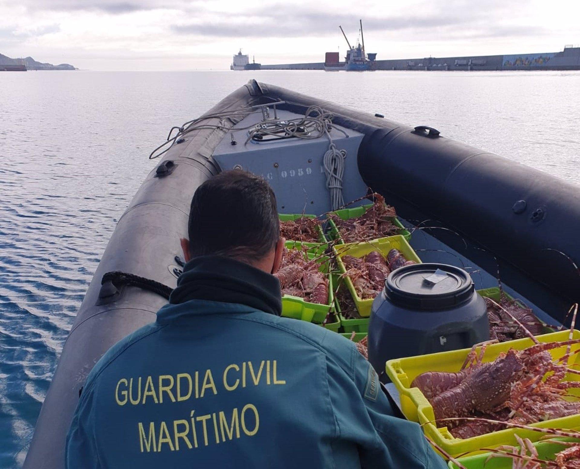 La Guardia Civil se incauta de 80 langostas con huevas en la lonja de Motril