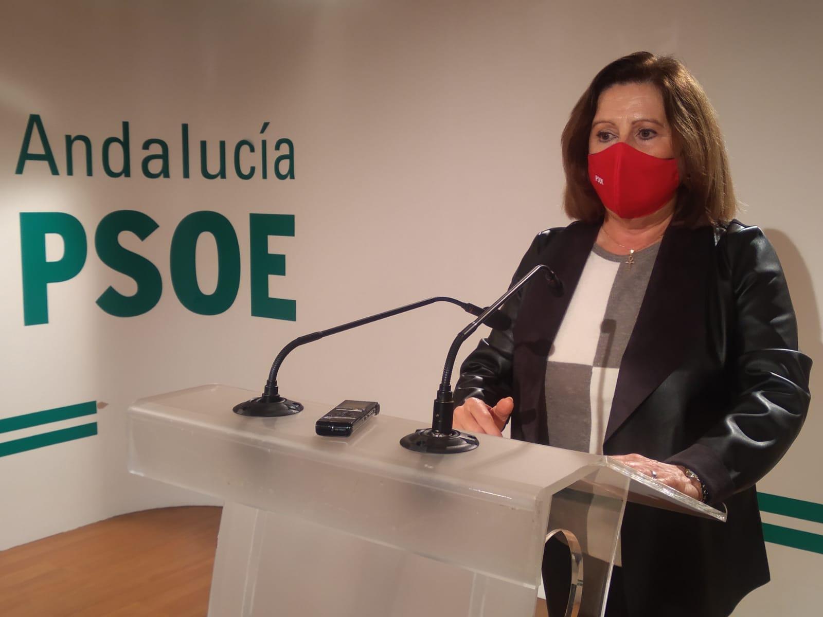 El PSOE pide a la Junta más recursos para acelerar la vacunación en la provincia y proteger a la ciudadanía