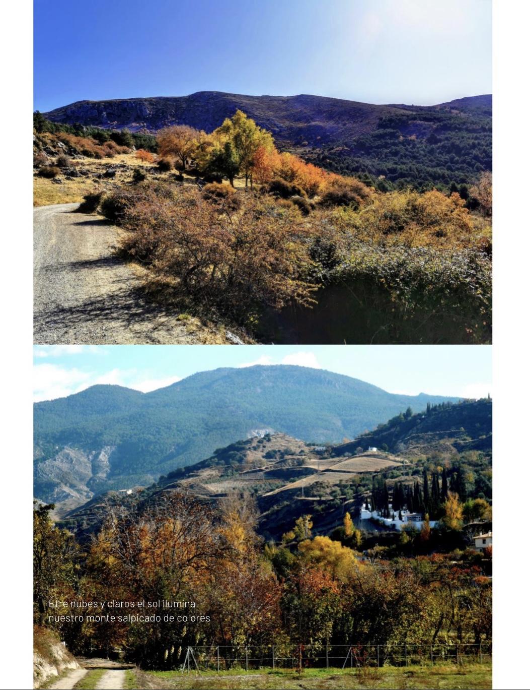 Un libro con más de cien fotos de vecinos de Monachil muestra los colores del otoño en el municipio