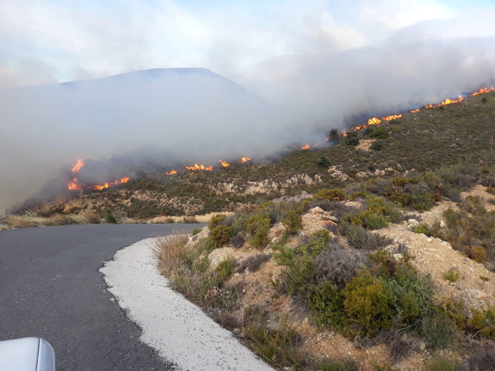 Declarado un incendio forestal en Juviles