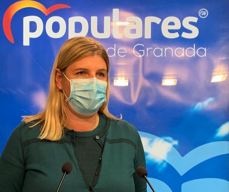 El PP cuestiona a Entrena por rechazar el plan de rescate propuesto por el partido