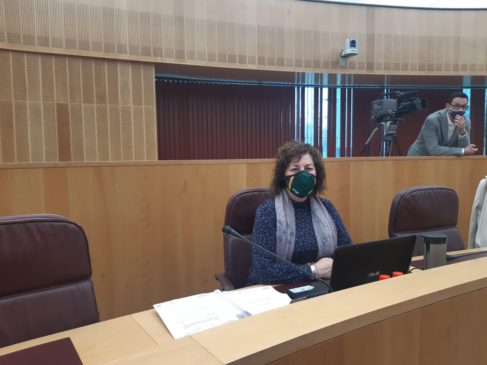 Aprueban en Diputación la moción de VOX para avanzar en la prevención del suicidio