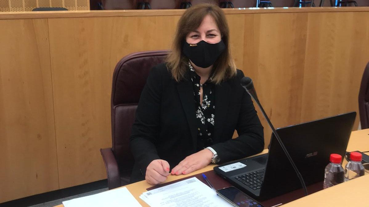 VOX propone en Diputación avanzar en la prevención del suicidio en Granada