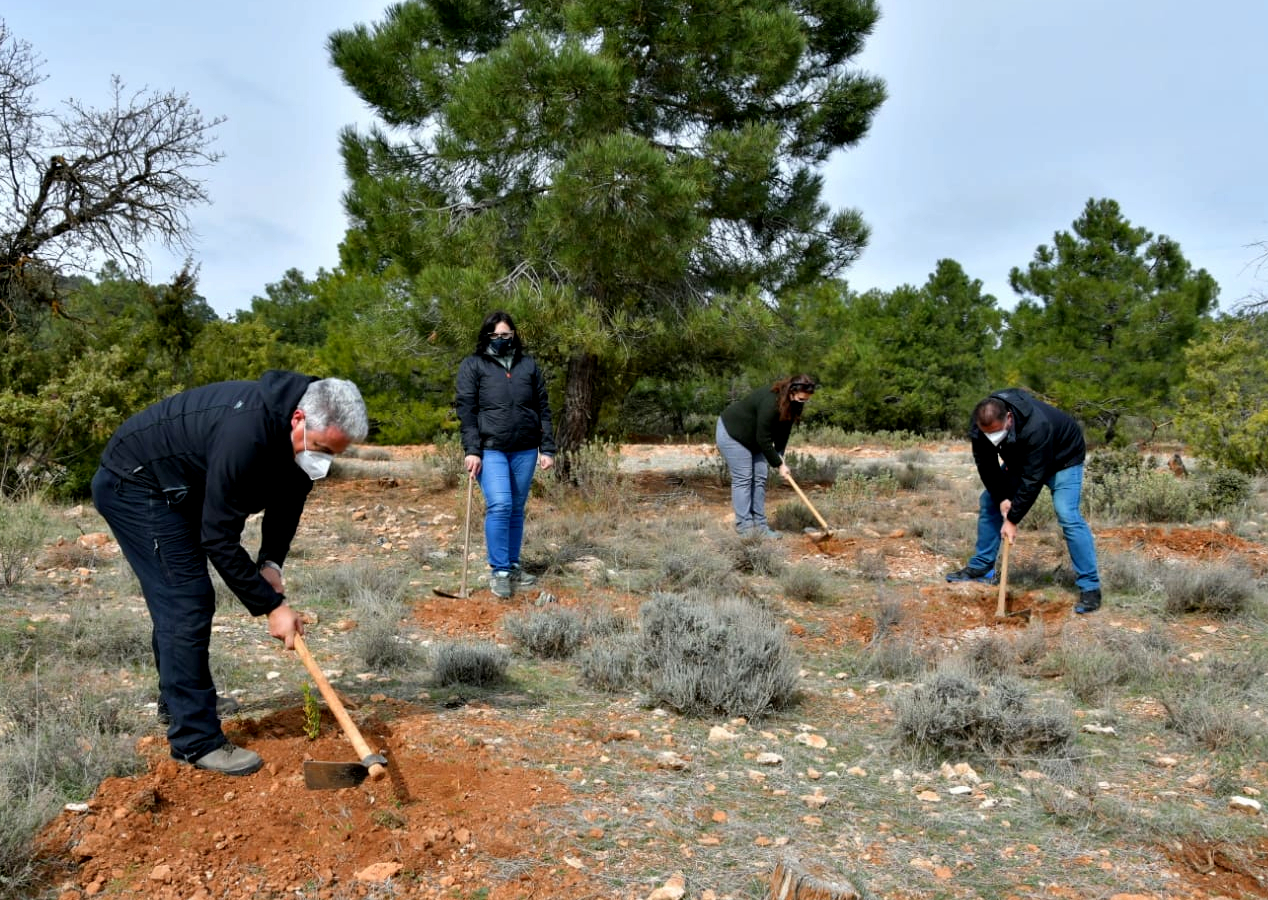 Desarrollo Sostenible conmemora el 28F con la plantación simbólica de especies autóctonas en Granada