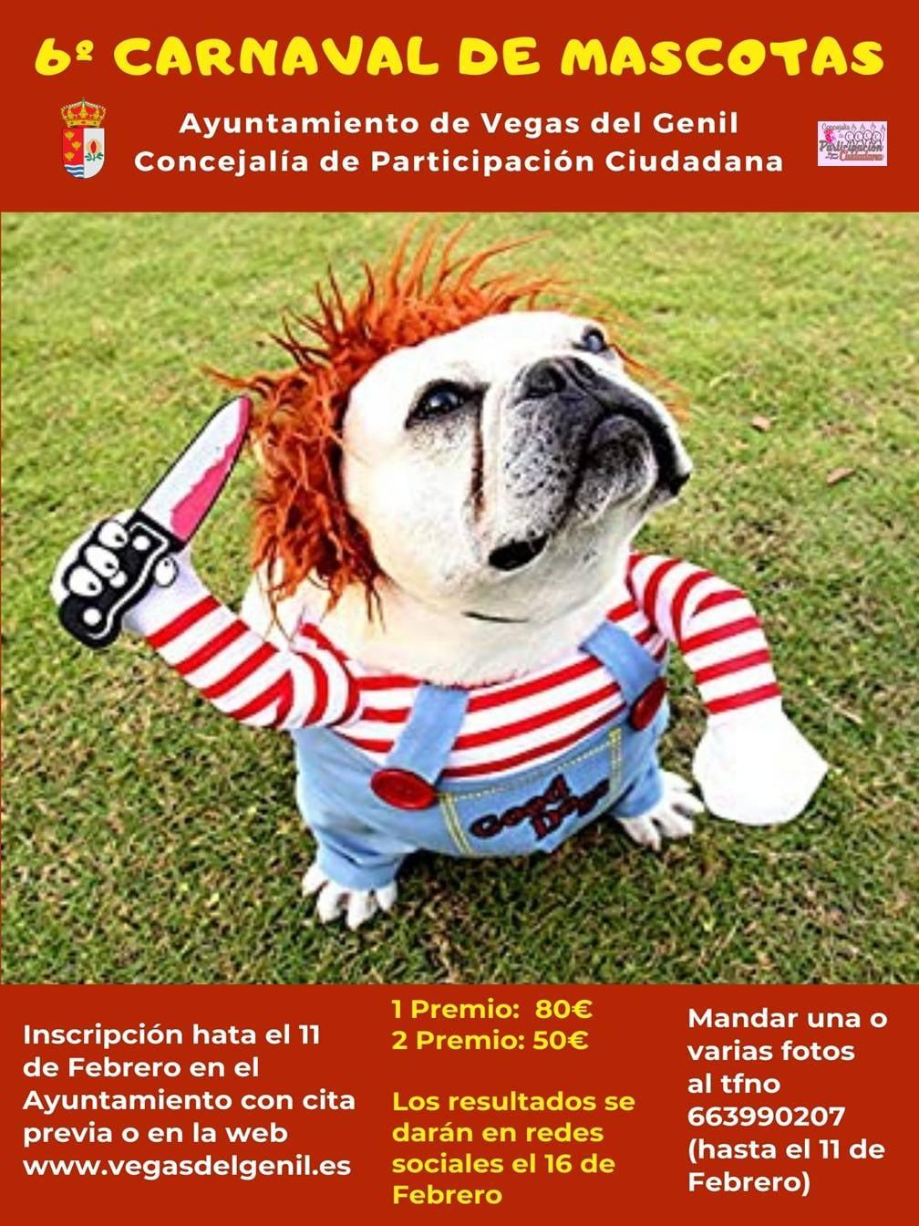 Vegas del Genil celebrará el Carnaval con un concurso virtual de disfraces para mascotas