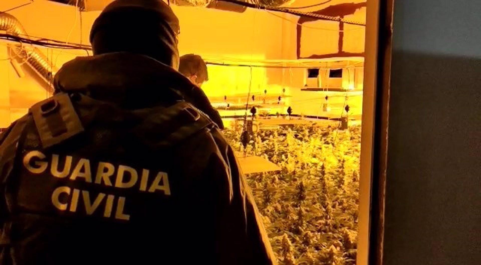 Desarticulados diez centros de producción de marihuana en Fuente Vaqueros