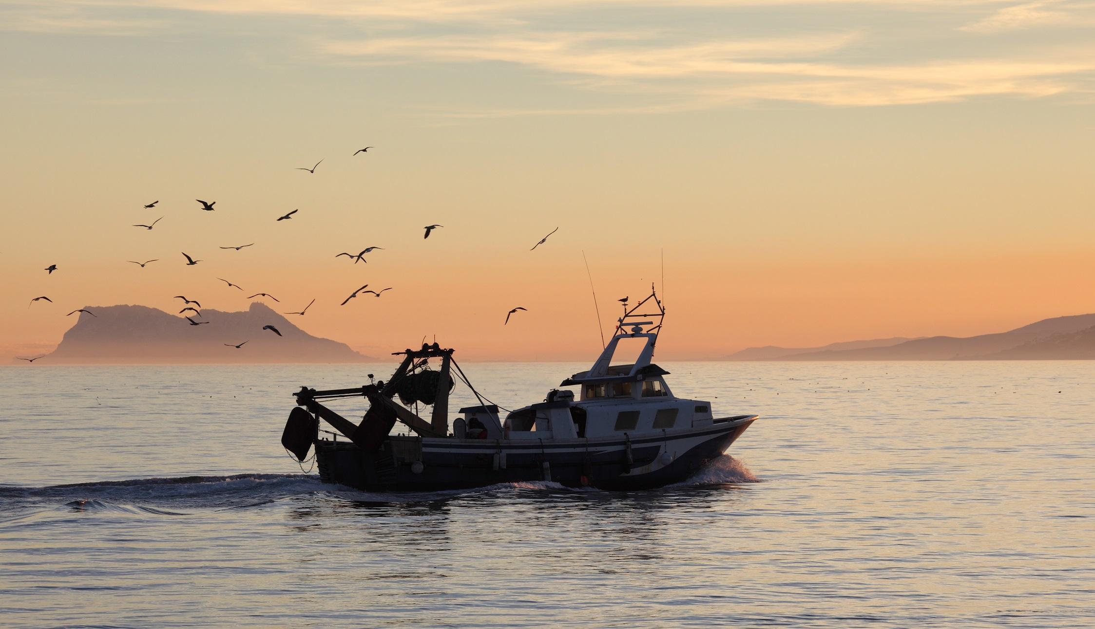 Ifapa incrementa su oferta de cursos telemáticos dirigidos al sector pesquero